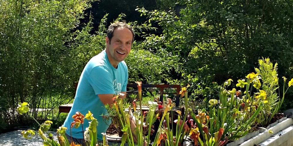 Moorbeetpflanzen 000 1537 148 (4) (4000x2000)