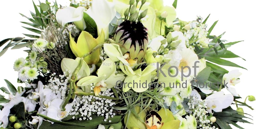 Flo_Sch_Str-2032_608_84w