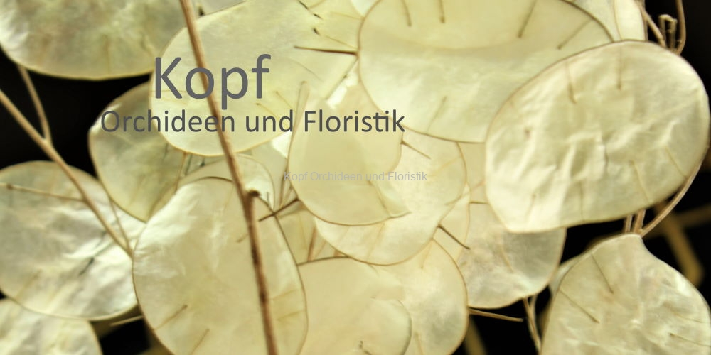 Flo_Tro_Win-2022_982_84